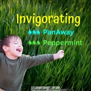 panaway_invigorating