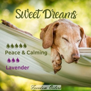 peace_sweet dreams